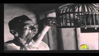 Watch:  The Tabla Maestro, Ahmad Jaan Thirakwa