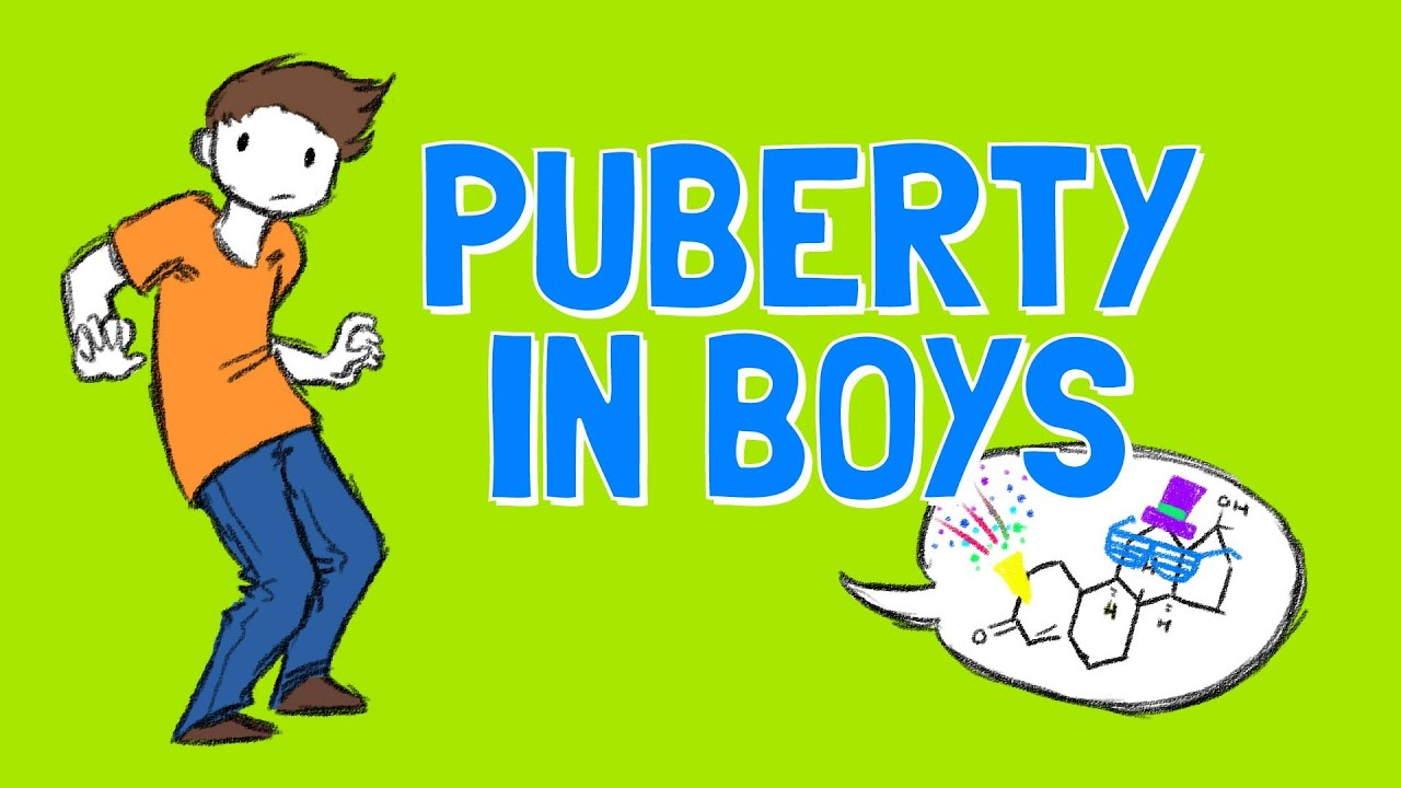 medium resolution of All About Boys Puberty - YouTube