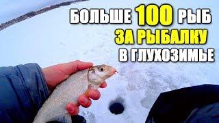 Этот метод ловли поражает Как поймать больше 100 РЫБ в глухозимье Рыбалка на мормышку 2020