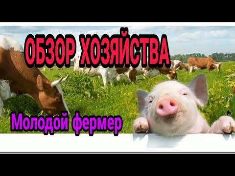 ШКОЛЬНИК-ФЕРМЕР //  СЕЛЬСКОЕ ХОЗЯЙСТВО В 16 ЛЕТ