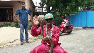 Indian Cobra venomous snake (naja naja) rescue from Asansol  (w .b ) ये असली नाग है ।