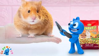 Tiny Set Up His Hamster with Trap - Stop Motion Animation Short Film