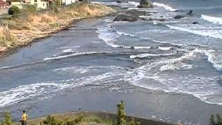 東日本大震災 2011.3.11 thumbnail