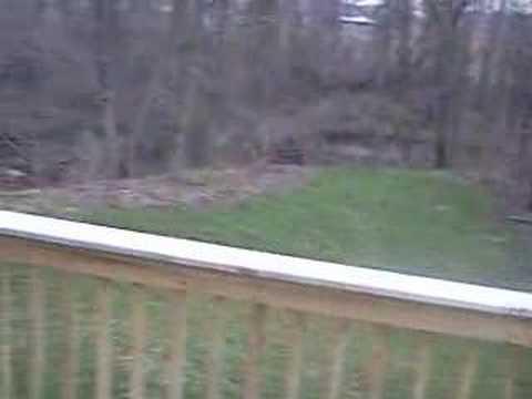 10962 Woodedge Drive - Winding Creek Circle