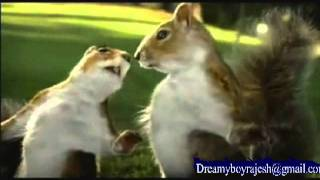 Nestle KIT KAT squirrel Ad Aug 2010 Break Banta Hai Raj Dream