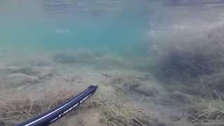 Побережье г. Избербаш. Рыбалка подводная.