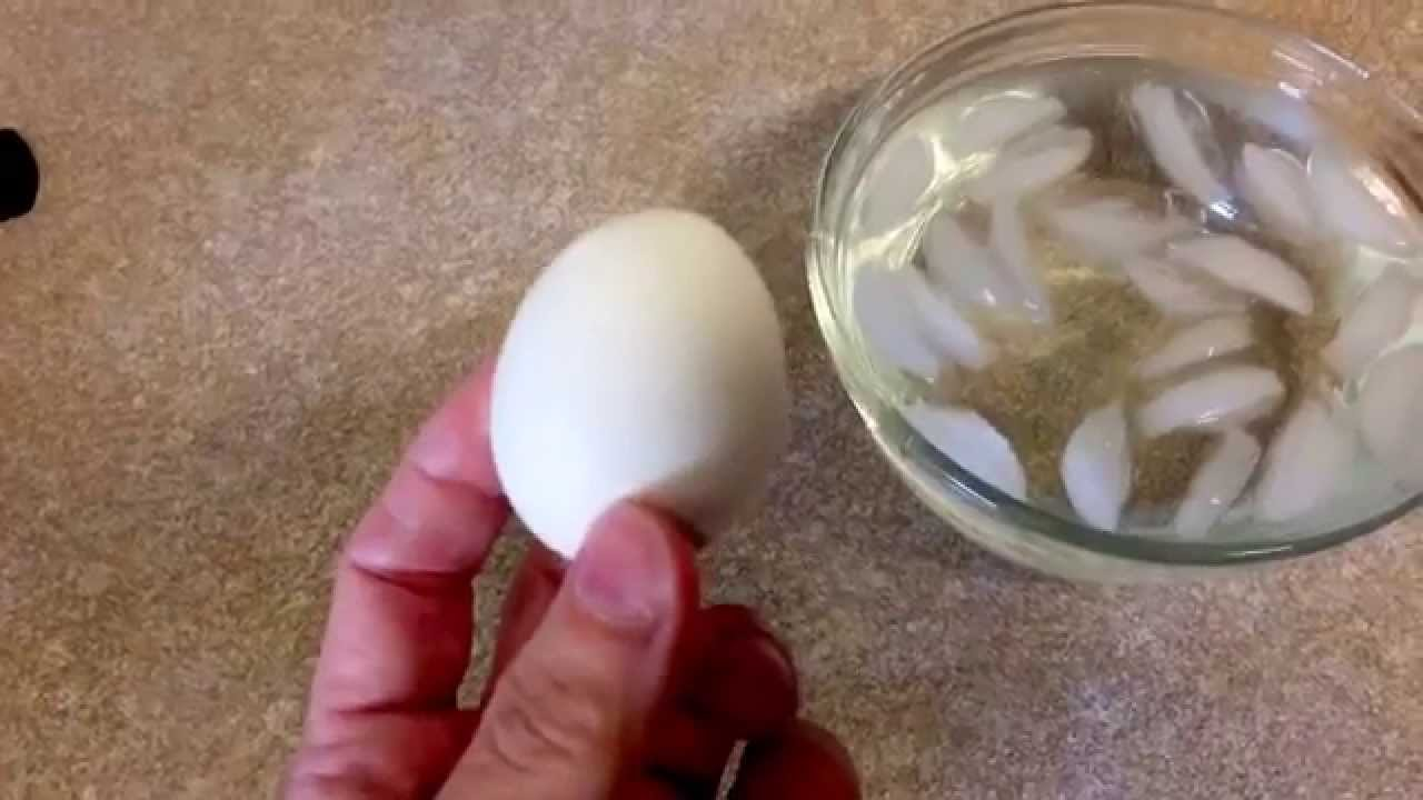 How to Tell if Eggs are Bad - YouTube
