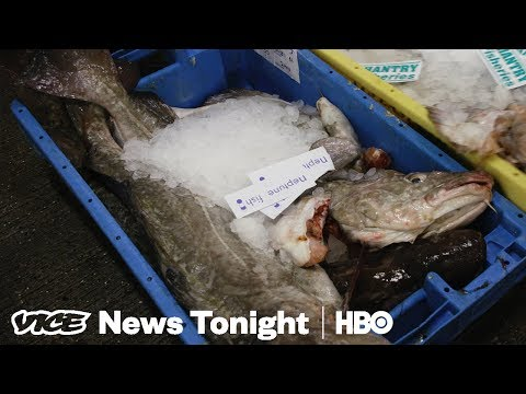 Britain's Fish Capital Voted To Leave The EU — Now They Want It Back (HBO)