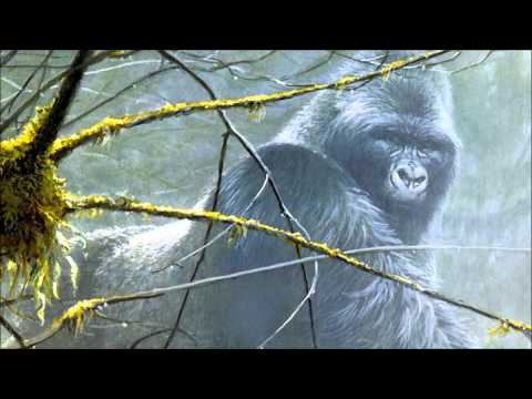 Looking To The Future (Trailer Music Virunga)