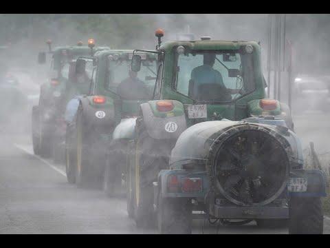 Caravana de tractores por el hospital Reina Sofia y Provincial