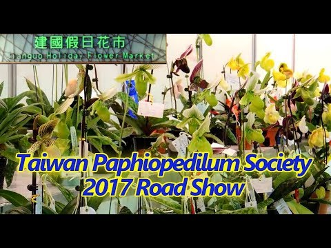 Taiwan Paphiopedilum Society 2017 Road show-Jiangou Holiday Flower Market- Part 1-overview