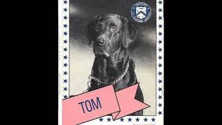 Drug Dog Trading Cards