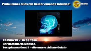 Der gesteuerte Mensch: Toxoplasma Gondii – die unterschätzte Gefahr - Pravda TV - 16.06.18