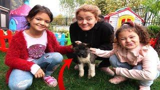Öykü ve Masal'a Gelen Büyük Sürpriz! Funny & cute dogs and kids