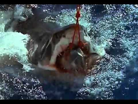 Kinh khủng với cá mập trắng