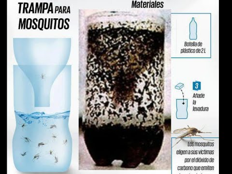 how to make a home made mosquito trap