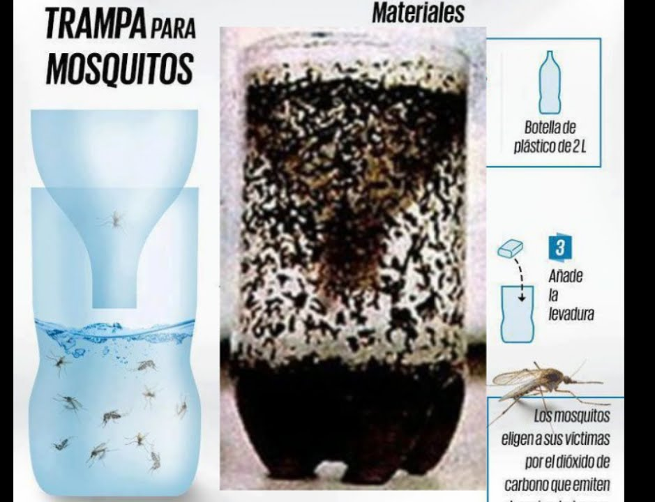 How To Make A Home Made Mosquito Trap Youtube