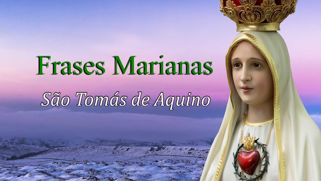 Frases Marianas São Tomás De Aquino Arautos Do Evagelho Youtube