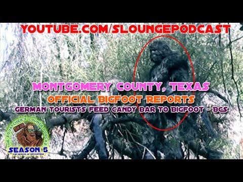 Bigfoot Encounters from Montgomery County, Texas - SLP525