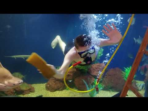 Ohio Fish Rescue - Cleaning the 4400 gallon tank