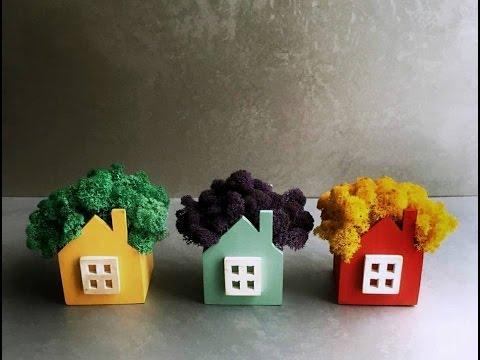 Скандинавский мох на стене — услуги по озеленению стен