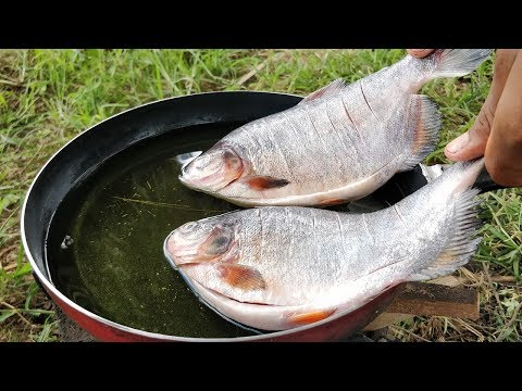 Deep Fried Fish With Mango Sauce | Fish & Mango Recipe