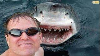 17 Selfies que terminaron TERRIBLEMENTE MAL!