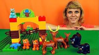Собираем конструктор Lego - Заповедник с животными. Видео для детей. Lego Duplo Forest Park 10584