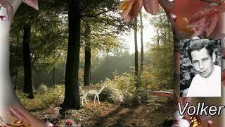 Volker (Günter Barde) - Im grünen Wald (Dort wo die Drossel singt)