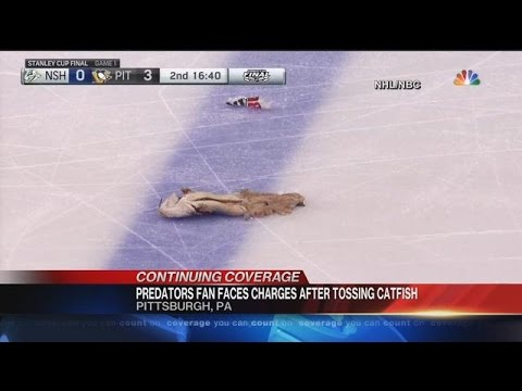 Predators Fan Faces Charges After Tossing Catfish On Pittsburgh Ice