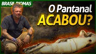 A DESTRUIÇÃO QUE O FOGO CAUSOU AO PANTANAL!   RICHARD RASMUSSEN