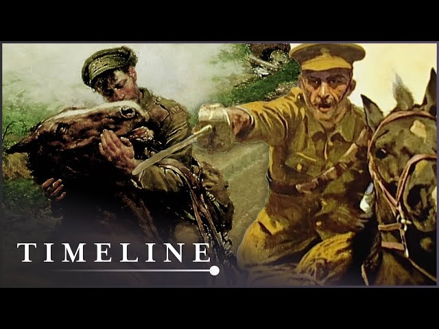 War Horse: The Real Story (WW1 Documentary) | Timeline
