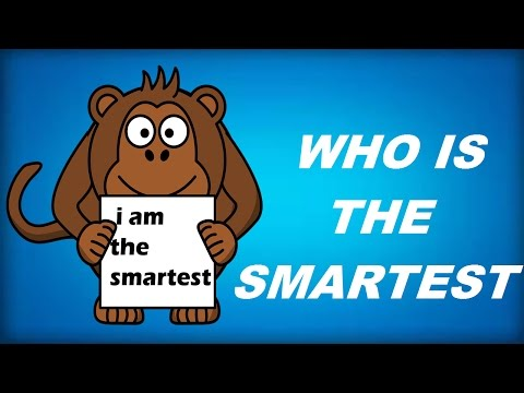 10 MORE BRAINY, TRICKY, FUNNY PERCEPTION BASED RIDDLES. CAN YOU SOLVE THEM ALL?
