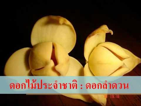 อาเซียนศึกษา : ประเทศกัมพูชา (402 SKWK)