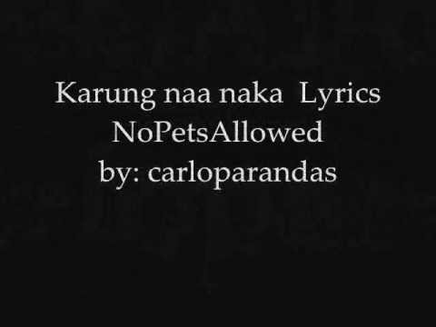 Karung Naa Naka - NoPetsAllowed Lyrics on screen