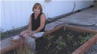 Flower Gardening : Planning A Flower Garden