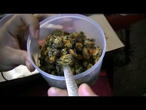 JAkarta Street Food 744 Oyster Fried Rice Tegal Nasi Goreng Kerang Dhenok 03 BR TiVi 5296
