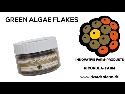 GREEN ALGAE FLAKES by Ricordea Farm