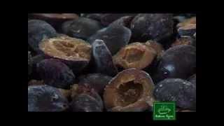 Kako se sprema pekmez od šljiva Bakina tajna