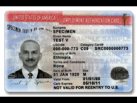 Разрешение на работу. Жизнь в США