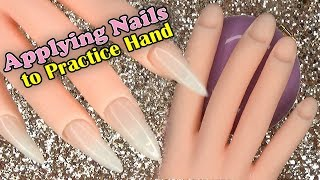 How To - Applying Nails to a Practice Hand   LongHairPrettyNails