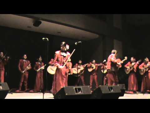 La Petenera.. competencia en San Marcos, Tx. Mariachi de Irving