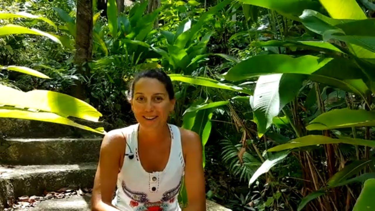 Meditation Retreat Review By Yesmin Labudhi Meditation Thailand Koh Phangan Youtube