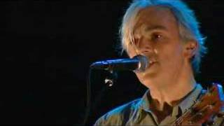 Robyn Hitchcock - Not Dark Yet