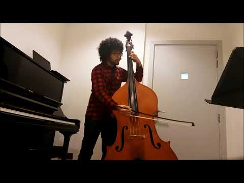 Beethoven Symphony No. 9, Finale (Recitativo) - Double Bass