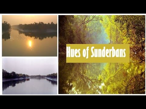 Sunrise at Sunderbans, West Bengal