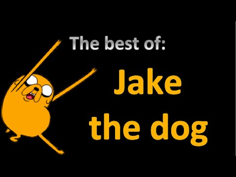 the best of: jake the dog