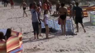 Dzik atakuje ludzi nad morzem !!! Plaża w Karwii
