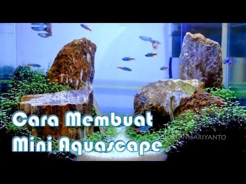 cara-membuat-mini-aquascape-2017-|-indonesia