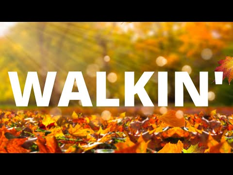 The Calvin Edwards Trio - Walkin'